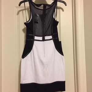 NWT Bebe mini dress